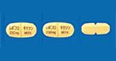 レボフロキサシン錠250mg「MEEK」